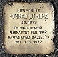 Stolperstein für Konrad Lorenz.jpg