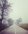 Strada per Acerenza.png