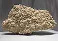 Strontium sulfate celestine - Ohio.jpg