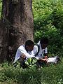 Students Studying along Ocean Road - Dar es Salaam - Tanzania.jpg