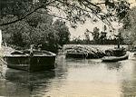 Sugar cane barges (8251226212).jpg
