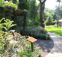 butterfly garden at sunken gardens - Florida Butterfly Garden