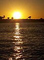 Sunset on Senegal river at Ouala 01.jpg