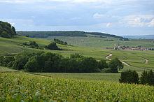 Montagne De Reims Wikipédia