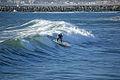 Surfing 35 2008.jpg