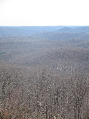 Susquehannock Trail System - View from the Cherry Springs vista of the Susquehannock State Forest, which the trail is almost entirely within