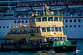 Sydney Ferry Scarborough 2.jpg
