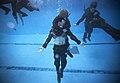 Synchronized Sinking (8533861167).jpg