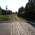 Sztutowo-narrow-track-180731-1.jpg