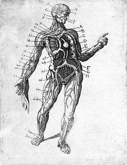 """T. Malfi, """"Il barbiere...libri tre"""", 1626 Wellcome L0008229"""