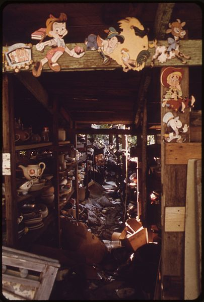 File:THE OWNER OF THIS HUGE JUNK SHOP ON THE KANSAS RIVER IN BONNER SPRINGS DIED IN 1971. NOW THERE IS ONLY THE RIVER AND... - NARA - 552097.jpg