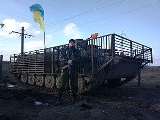 """Territorial defence battalions (Ukraine) - 11th territorial defence battalion """"Kievan Rus"""" fighter, 2014"""