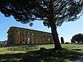 Tempio di Nettuno016.jpg