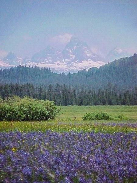 File:Teton Range from Caribou NF.JPG