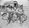 The British Army in Sicily 1943 NA5005.jpg