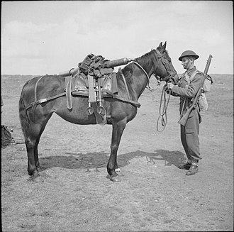 ML 3-inch mortar - Image: The British Army in the United Kingdom 1939 45 H29779