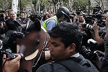 A pantomime horse is surrounded by media and police. Chaser member Chris Taylor is dismounting the obviously fake horse dressed like a police officer.