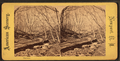 The Glen, from Robert N. Dennis collection of stereoscopic views.png
