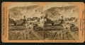 The Klondike. Street scene and dog team, Dawson City, from Robert N. Dennis collection of stereoscopic views.png