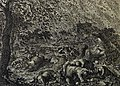 The Phillip Medhurst Picture Torah 340. The plague of hail and fire. Exodus cap 9 vv 23-25. Jan Luyken.jpg