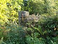 The Remaining Ruins of Newbyres Castle.jpg