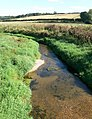 The River Welland - geograph.org.uk - 564298.jpg