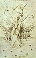 The Trees Have Ears and the Field Has Eyes by Hieronymus Bosch.jpg