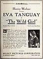 The Wild Girl (1917) - 3.jpg