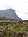 The end of the moorland track - geograph.org.uk - 450946.jpg