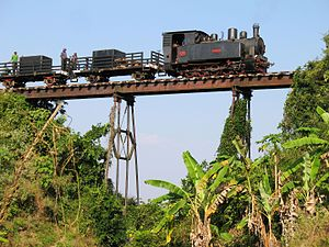 Cepu Forest Railway - The iconic bridge between Cepu and Gubug Payung on the Cepu Forest Railway: a major attraction for railway enthusiasts