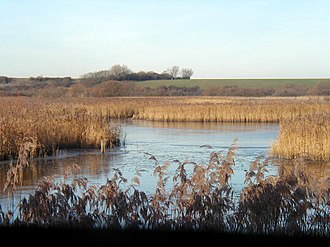 National nature reserve (United Kingdom) - Stodmarsh, a National Nature Reserve in Kent.