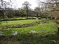 The ruins of Penhallam Moated Manor House - geograph.org.uk - 23988.jpg