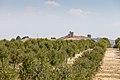 Theom3ga-36- Torre Alocaz, RI-51-0008197.jpg