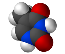 Thymine-3D-vdW.png