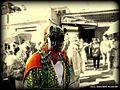 Tigre (jaguar) de las danzas guerrerenses .jpg