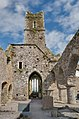 Timoleague Friary Nave and Tower 2017 08 31.jpg