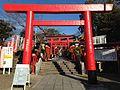 Toriis of Sanko Inari Shrine.JPG