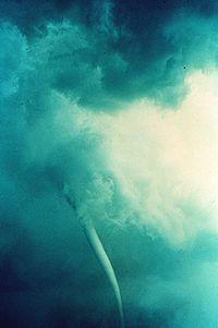 Un tornado puede ser el responsable de capturar a los animales y dejarlos caer a grandes distancias de su lugar de origen.
