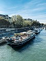 Tourist boats near National Assembly, Paris.jpg