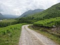 Track along Loch Etive - geograph.org.uk - 1396325.jpg