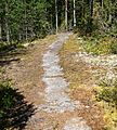 Trail on rock 3.jpg
