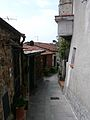 Trebiano Magra-borgo7.jpg
