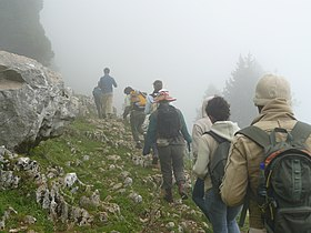 Trekking in the Lebanon Mountains.jpg