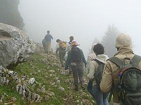 Trekking in the Lebanon Mountains.jpg