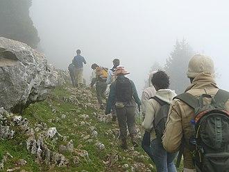 Lebanon Mountain Trail - Dinniyeh