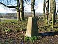 Triangulation pillar on Wibben Hill - geograph.org.uk - 320709.jpg