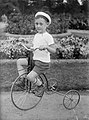 Tricycle, kid, kid, garden, summer Fortepan 1445.jpg