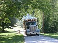Truckload of Logs (1131166556).jpg