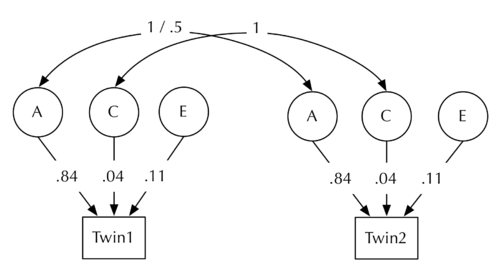 Twin Study Structural ACE model STD.png