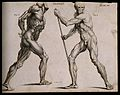 Two écorchés, one walking with the aid of a staff grasped wi Wellcome V0007953.jpg